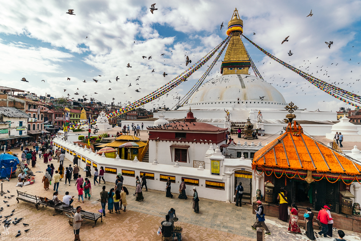 A flock of pigeons flying over Boudhanath Stupa