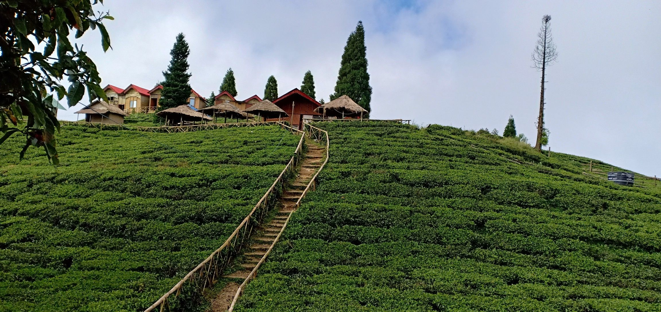 community homestay in Ilam